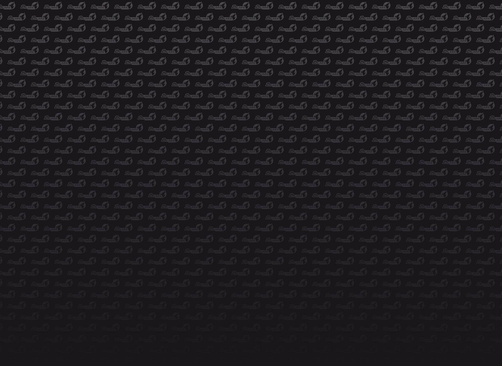Logo Blaze Racing 2016